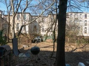 731_jefferson_backyard-1679